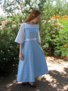 Blue embroidered princess dress