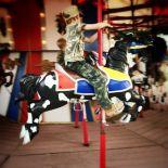 merry-go-round-Josh